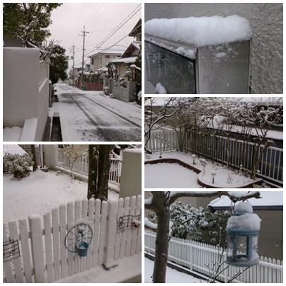 H26・1・19 雪