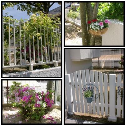 2014 5月お庭